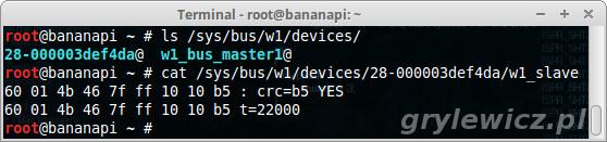 Banana Pi odczyt z ds18b20